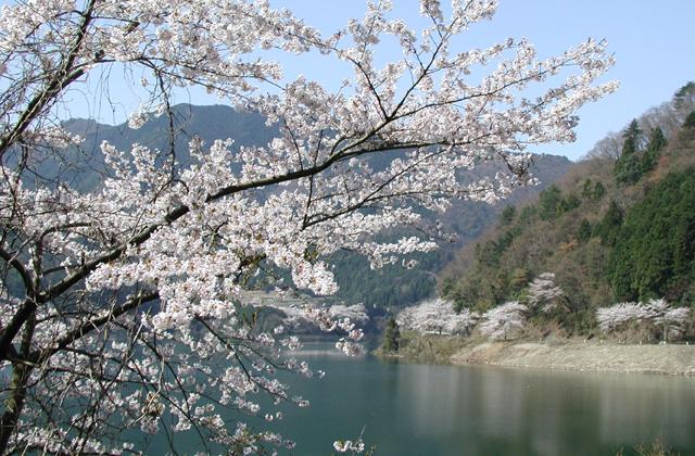 永源寺ダム湖(体験観光)