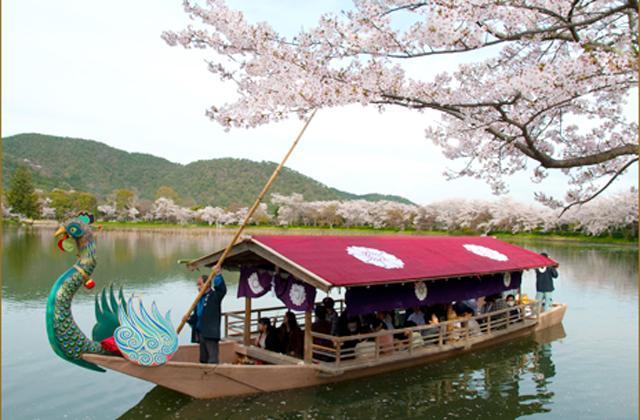 【開催中止】華道祭