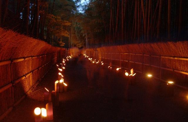 竹の径・かぐやの夕べ