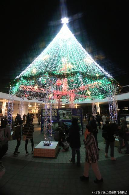 いばらきイルミフェスタ灯(AKARI)