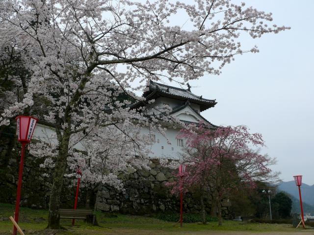 出石桜まつり