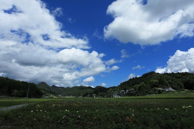 寳塚市自然休養村