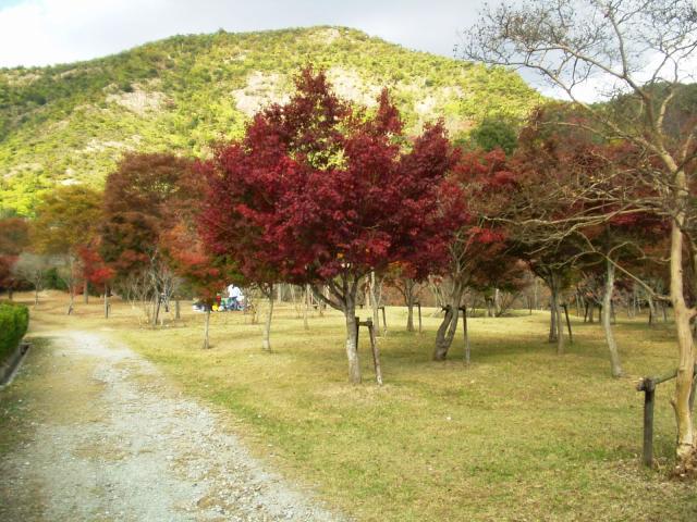 鹿島扇平自然公園