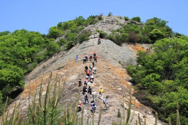 紅山登山コース