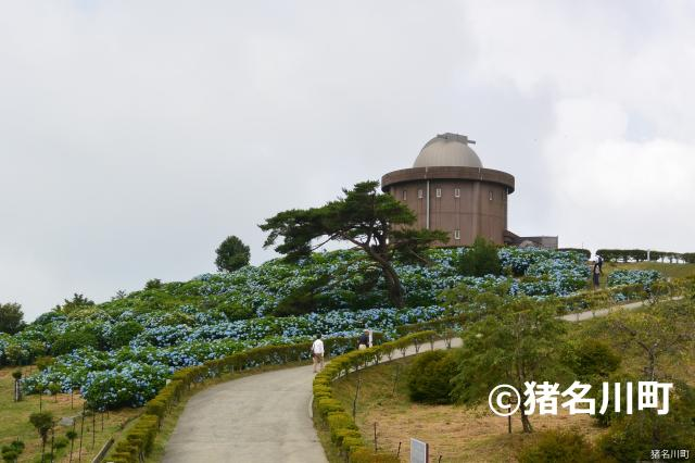 大野山(兵庫県猪名川町)