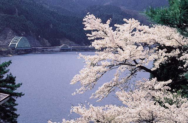 音水湖(引原ダム)