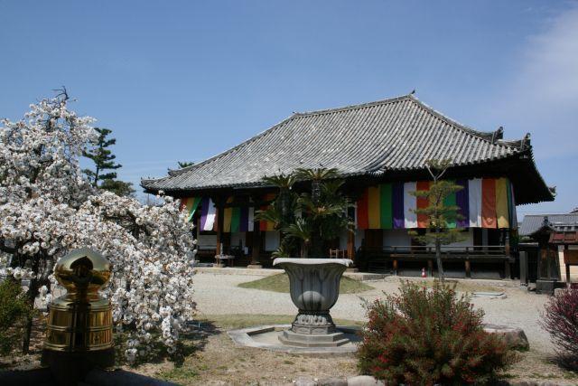 法華寺 ひな会式