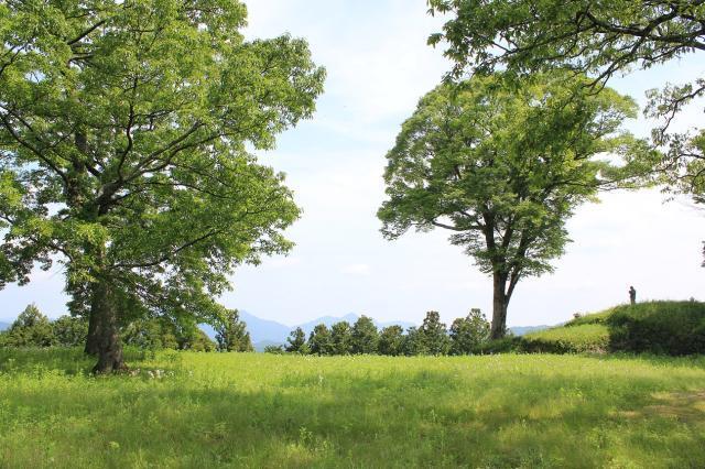 松山城(秋山城)跡