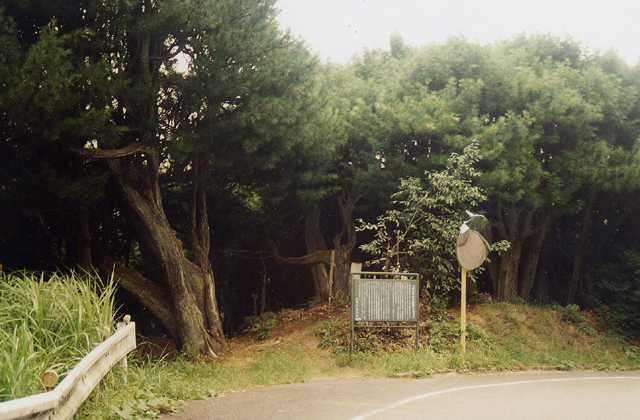 kouyamaki群落