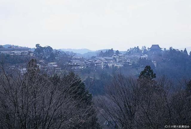 Mt. Yoshino★K2909