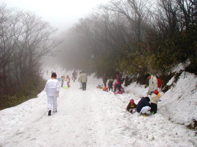南國紀州的雪被閒置