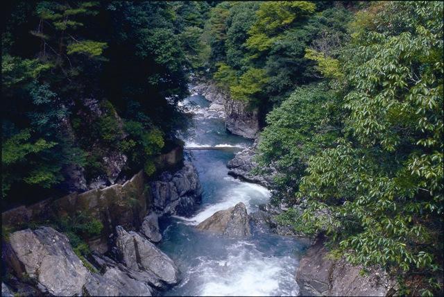 達磨石頭溪谷