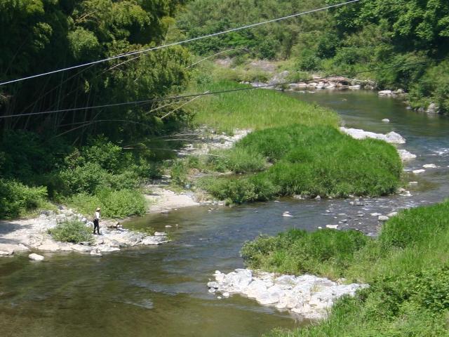 貴志川、真實國家河