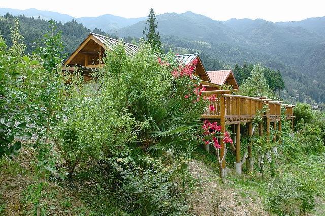 furuichi自動露營地