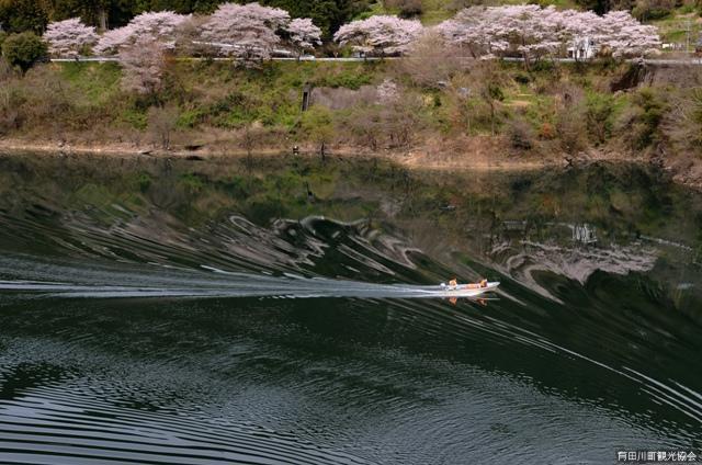 二川ダム湖畔