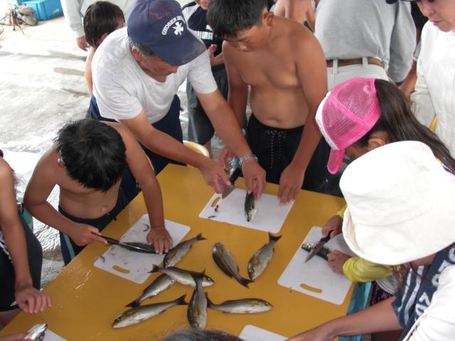 魚さばき体験