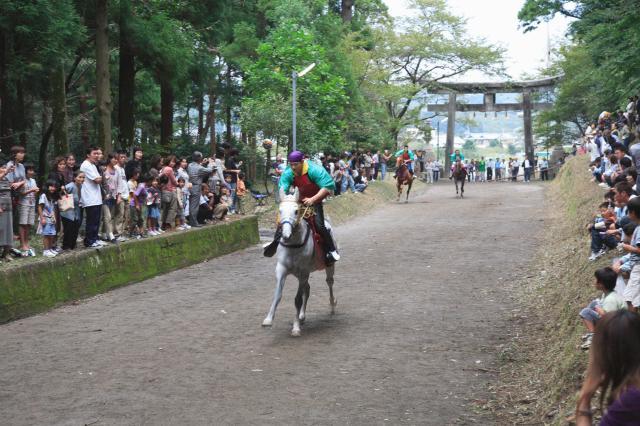 須賀神社の馬駆け
