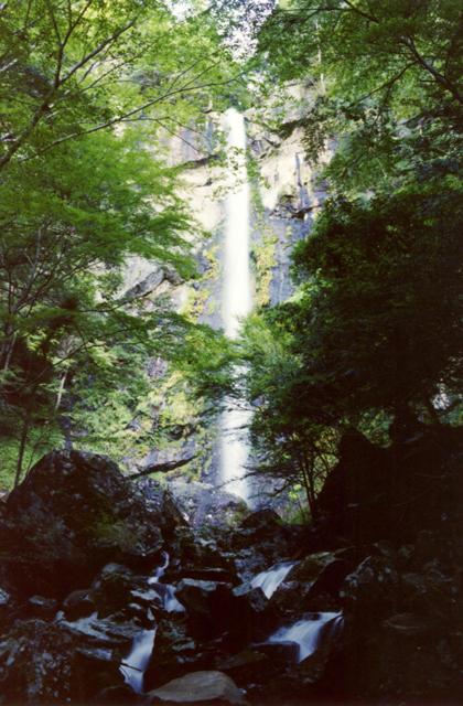 まぼろしの滝(和歌山県古座川町)
