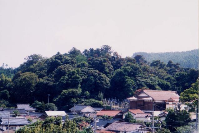 波波伎神社の社叢