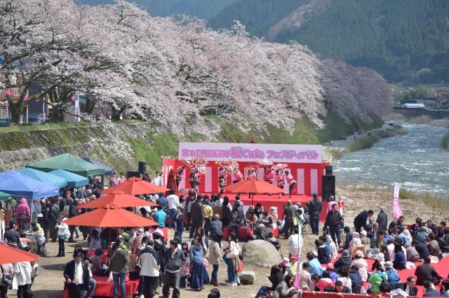 智頭河畔桜カフェフェスティバル