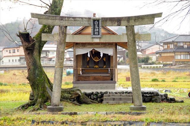 福本白兎神社