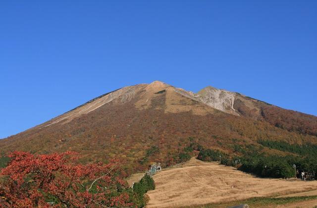 桝水高原の紅葉