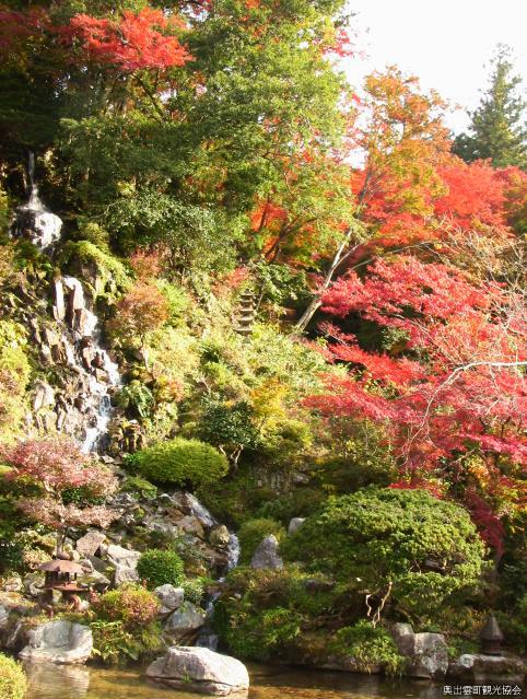 櫻井家庭紅葉