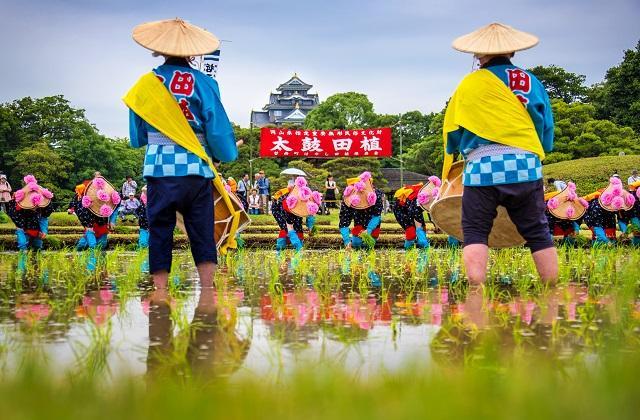 【2021年中止】後楽園のお田植え祭