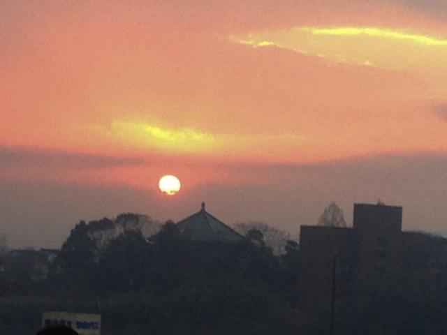 從津山城看元旦日出吧