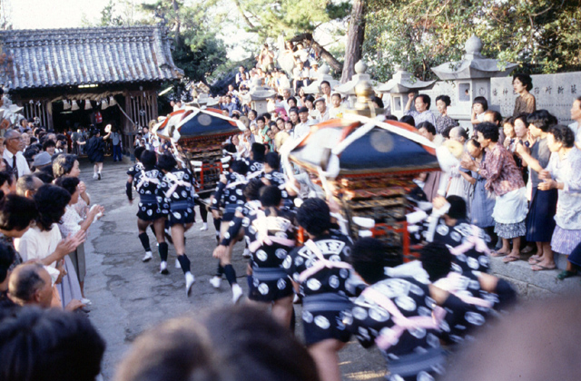 【2021年開催中止】真鍋島の走り神輿