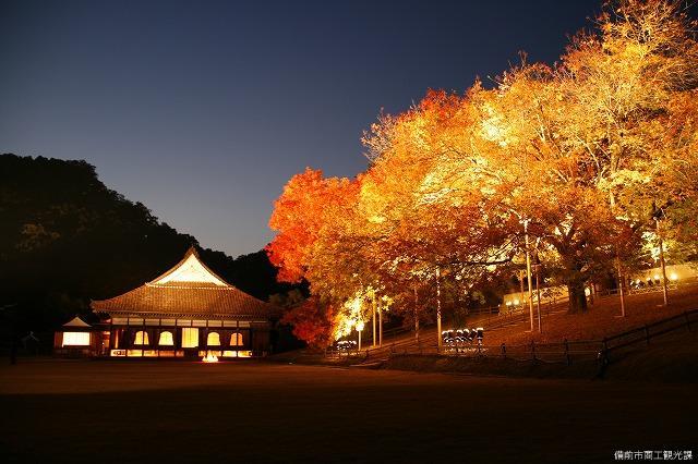 ライトアップ講堂と楷の木