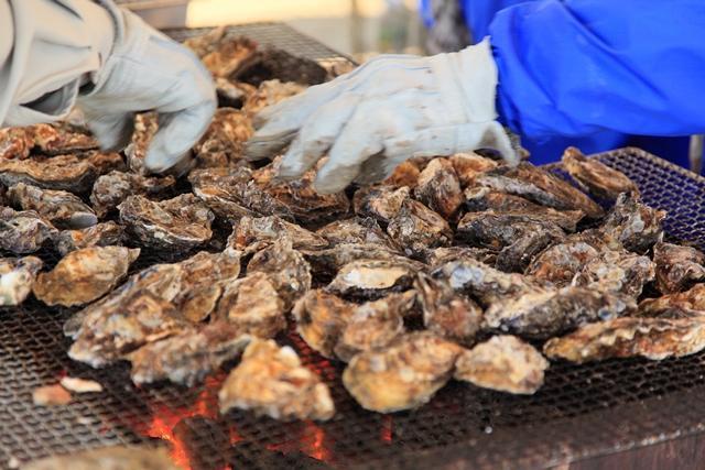 よりしま海と魚の祭典  ふるさと産業まつり