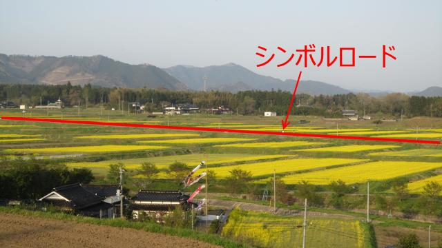 奈義の菜の花畑