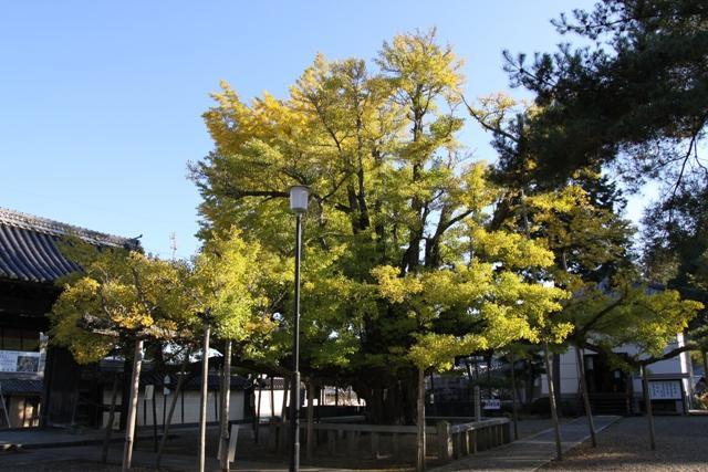 誕生寺(岡山県久米南町)
