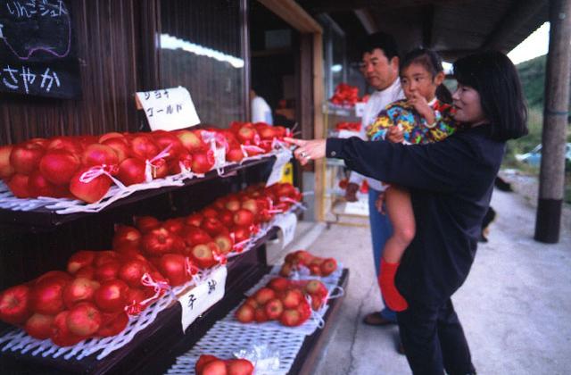 りんご(庄原市)