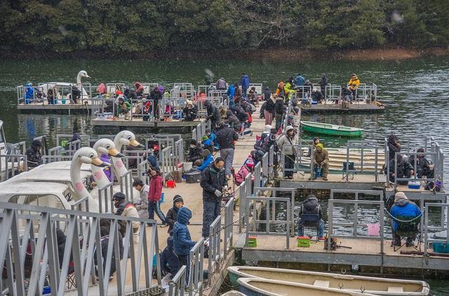豊田湖ワカサギ釣り大会