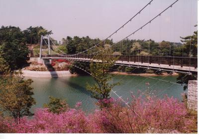 江汐公園/つつじ
