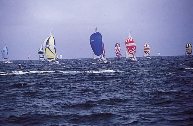 第46次阿波舞風帆比賽