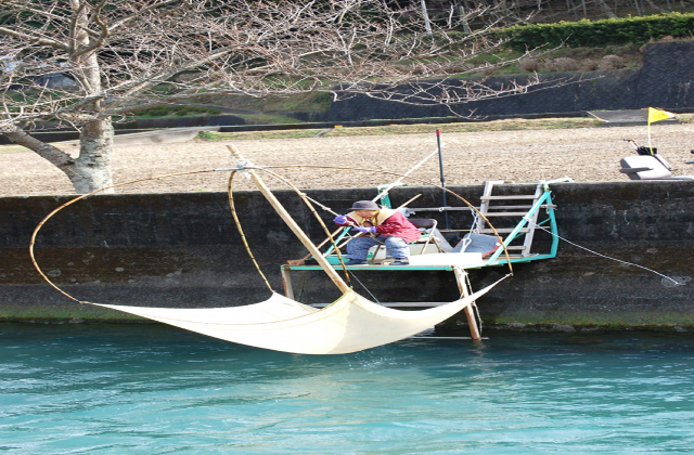 椿川のシラウオ漁