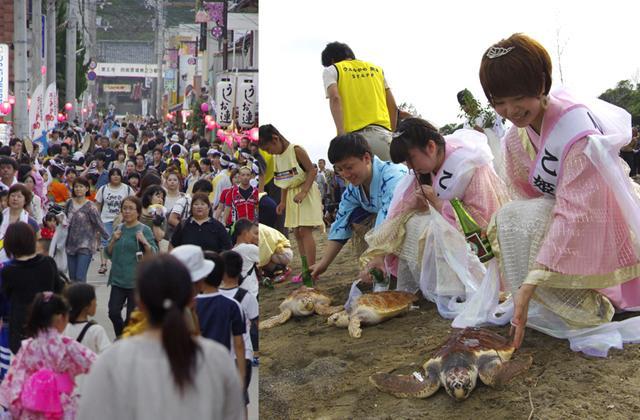 Hiwasa Sea Turtle Festival★37386ba2212086284