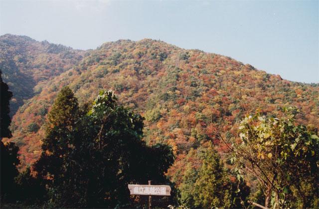 高越渓谷の紅葉
