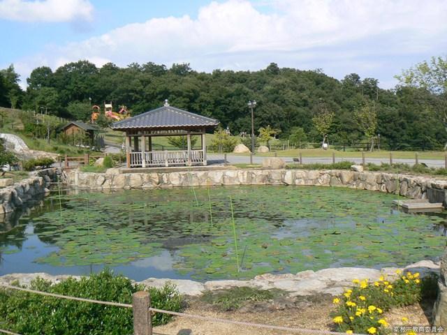 如意輪寺公園のオニバス