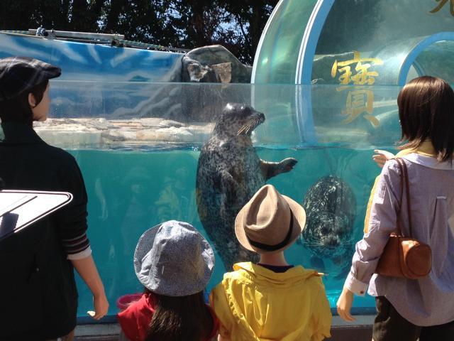 New Yashima aquarium