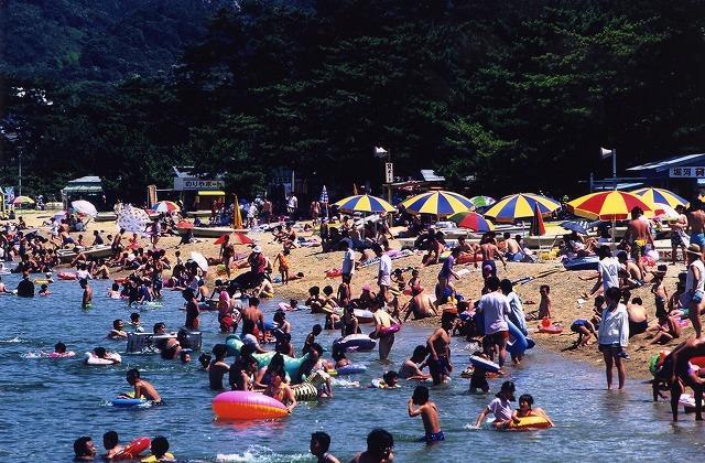 津田の松原 海水浴場