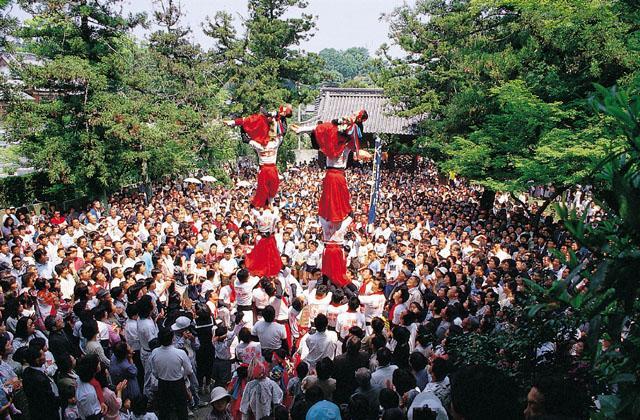 Imabari Region Spring Festival★38202ba2210121072