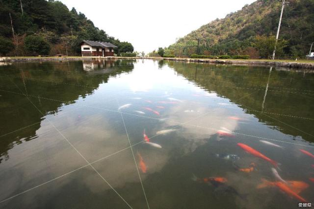 朝倉水壩湖畔綠水公園