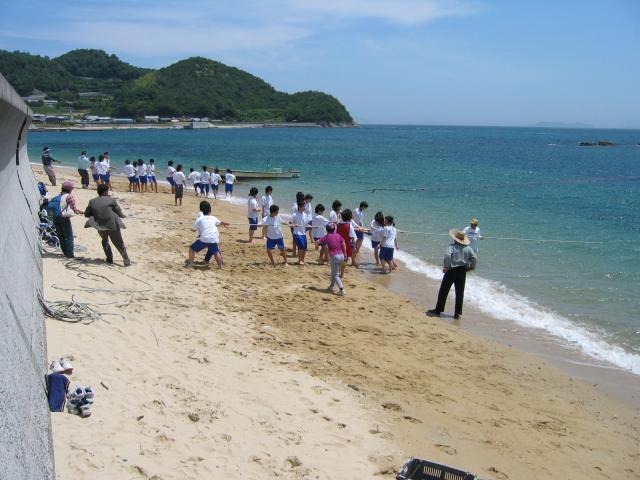大島観光地引き網