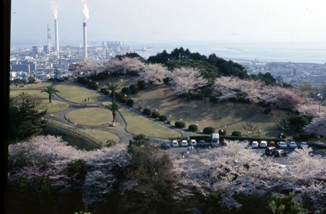 三島公園(愛媛県四国中央市)