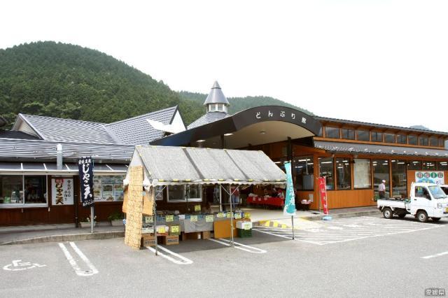 道の駅 どんぶり館
