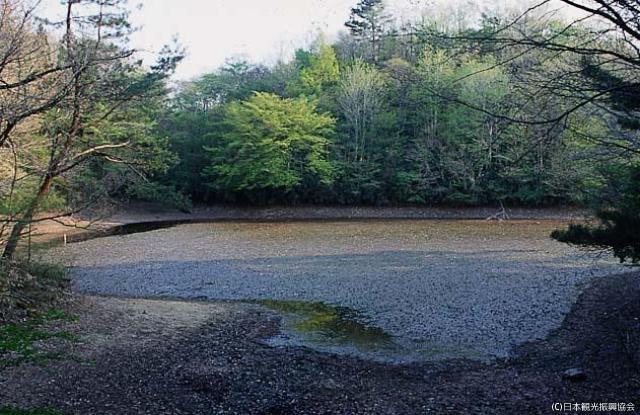 紅倉庫ka池塘